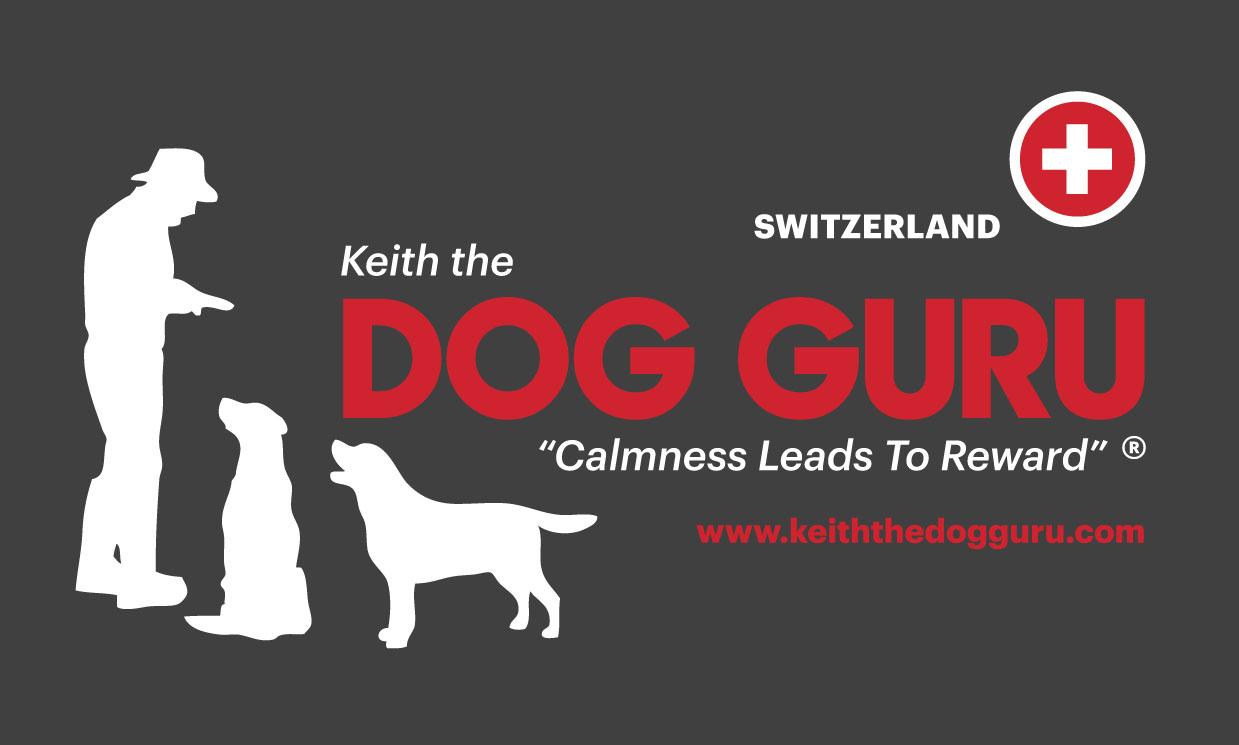 Switzerland Retriever Training Guru Style